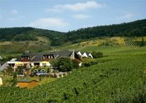 Privatpension Weingut Heidhof
